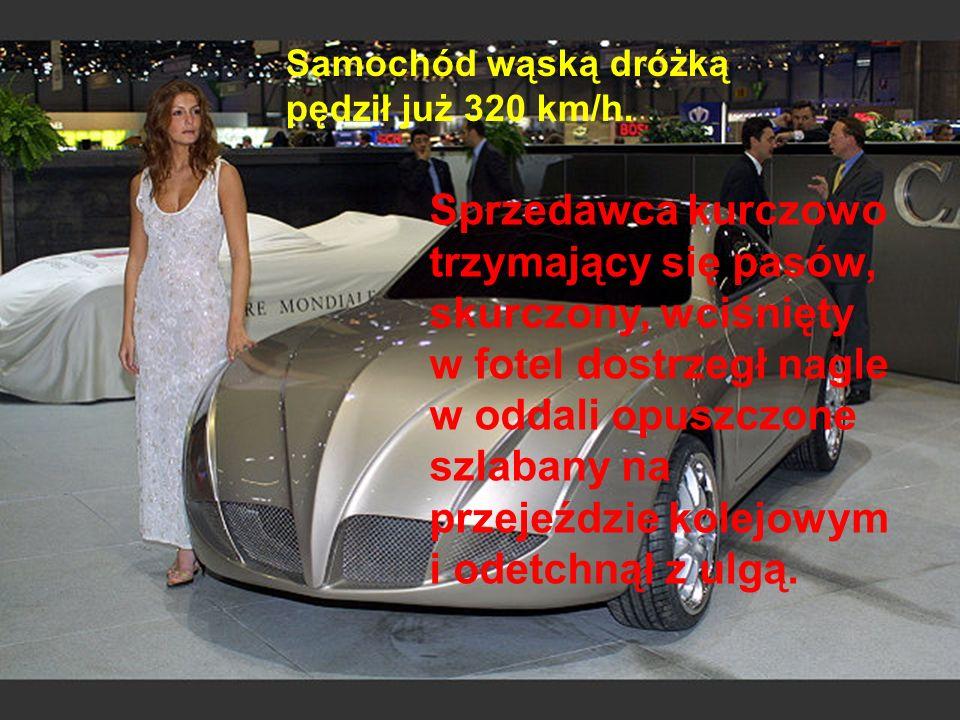 Samochód wąską dróżką pędził już 320 km/h.