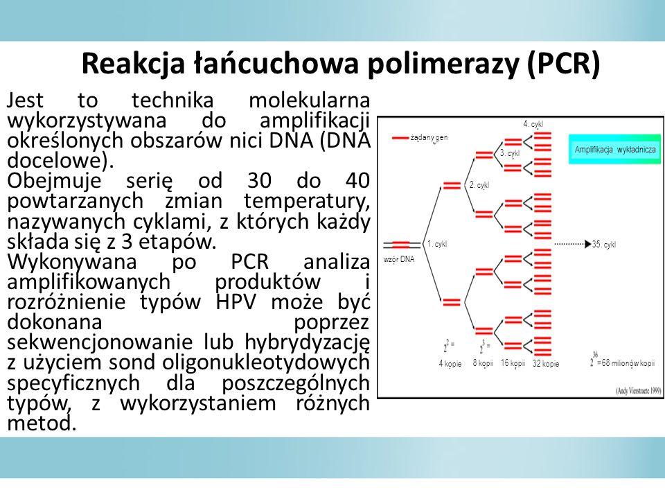 Reakcja łańcuchowa polimerazy (PCR)