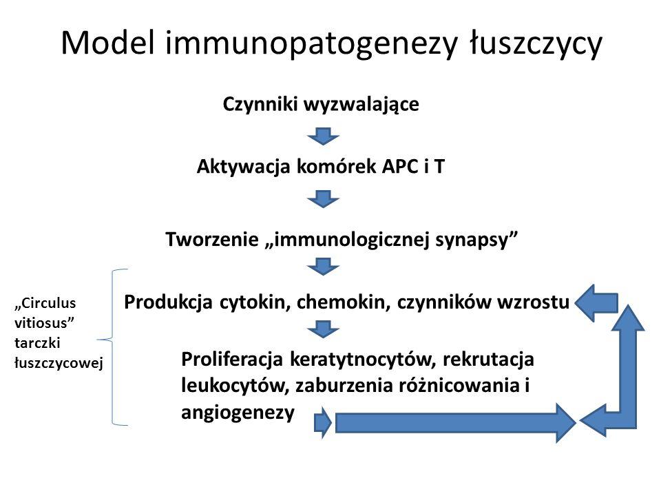 Model immunopatogenezy łuszczycy