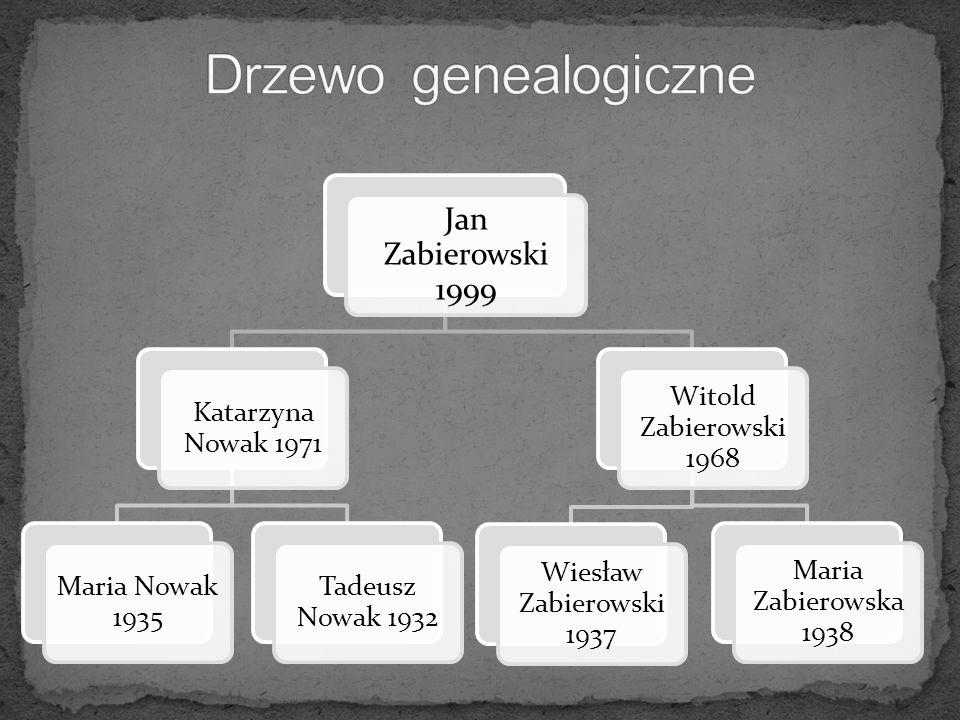 Drzewo genealogiczne Jan Zabierowski 1999 Katarzyna Nowak 1971