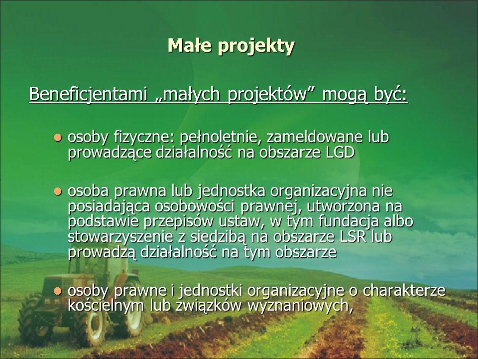 """Beneficjentami """"małych projektów mogą być:"""