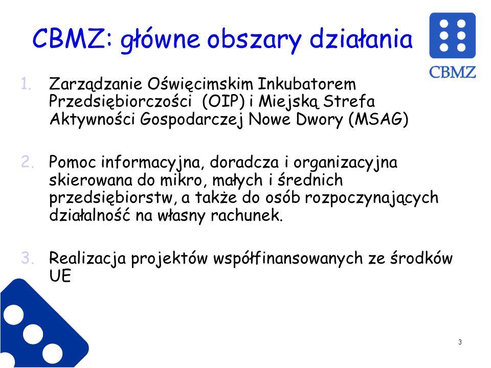 CBMZ: główne obszary działania