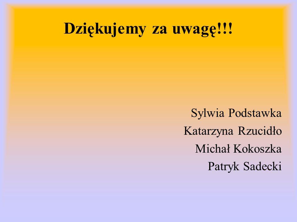 Dziękujemy za uwagę!!! Sylwia Podstawka Katarzyna Rzucidło Michał Kokoszka Patryk Sadecki