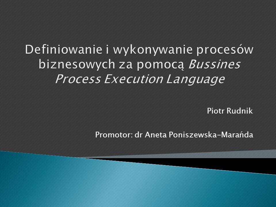 Piotr Rudnik Promotor: dr Aneta Poniszewska-Marańda