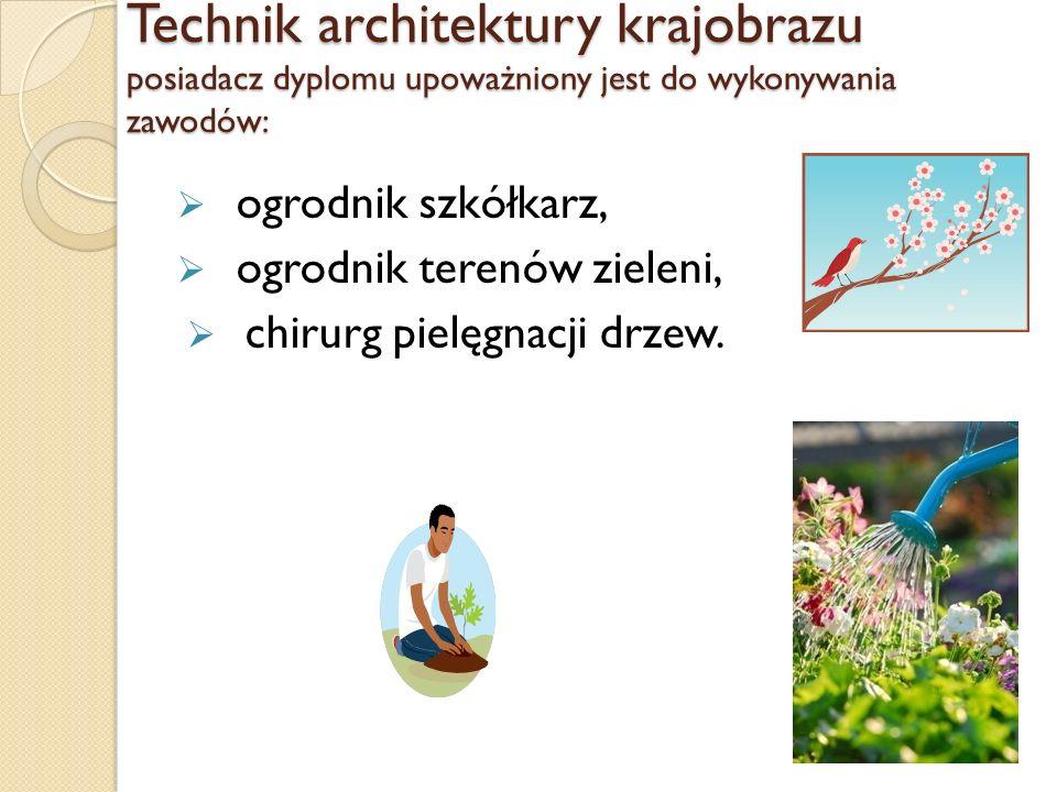 Technik architektury krajobrazu posiadacz dyplomu upoważniony jest do wykonywania zawodów: