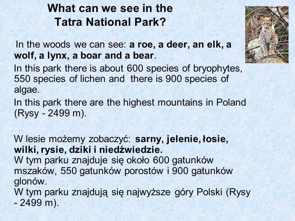 What can we see in the Tatra National Park