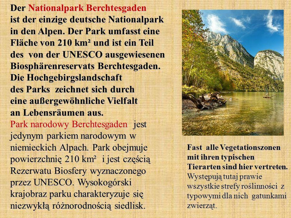 Der Nationalpark Berchtesgaden ist der einzige deutsche Nationalpark in den Alpen. Der Park umfasst eine Fläche von 210 km² und ist ein Teil des von der UNESCO ausgewiesenen Biosphärenreservats Berchtesgaden. Die Hochgebirgslandschaft des Parks zeichnet sich durch eine außergewöhnliche Vielfalt an Lebensräumen aus. Park narodowy Berchtesgaden jest jedynym parkiem narodowym w niemieckich Alpach. Park obejmuje powierzchnię 210 km² i jest częścią Rezerwatu Biosfery wyznaczonego przez UNESCO. Wysokogórski krajobraz parku charakteryzuje się niezwykłą różnorodnością siedlisk.