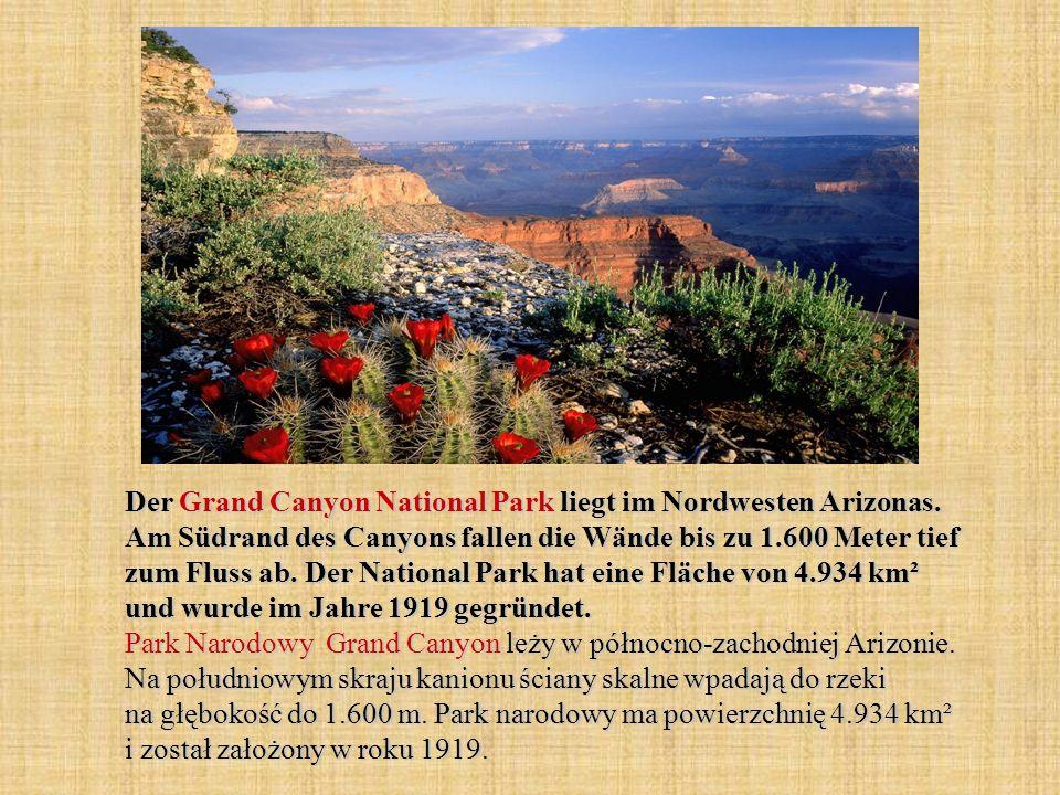 Der Grand Canyon National Park liegt im Nordwesten Arizonas