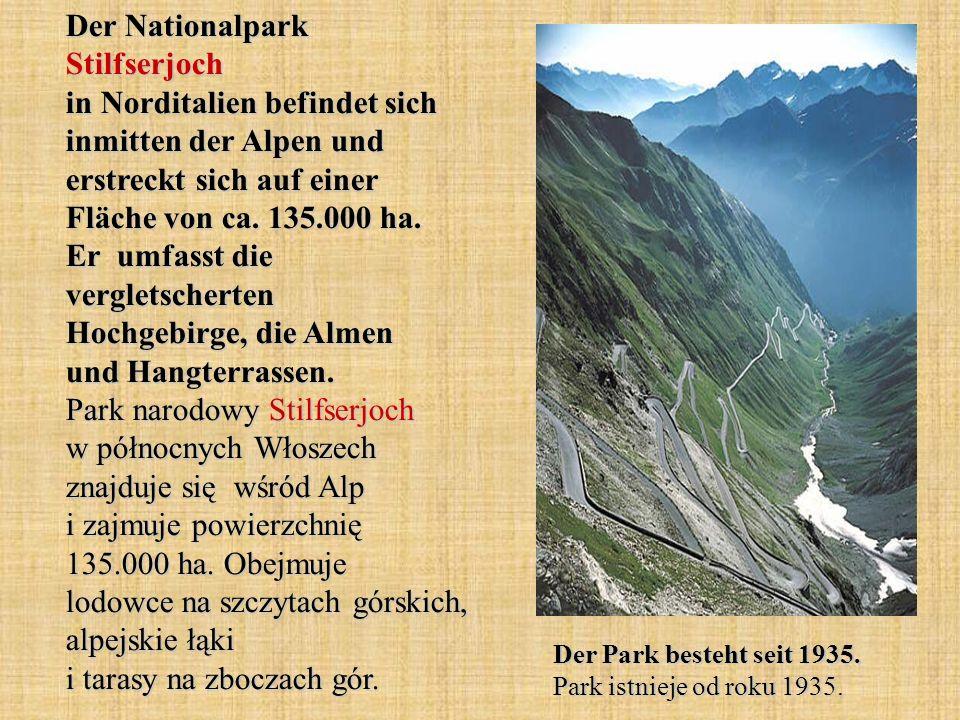 Der Nationalpark Stilfserjoch in Norditalien befindet sich inmitten der Alpen und erstreckt sich auf einer Fläche von ca. 135.000 ha. Er umfasst die vergletscherten Hochgebirge, die Almen und Hangterrassen. Park narodowy Stilfserjoch w północnych Włoszech znajduje się wśród Alp i zajmuje powierzchnię 135.000 ha. Obejmuje lodowce na szczytach górskich, alpejskie łąki i tarasy na zboczach gór.