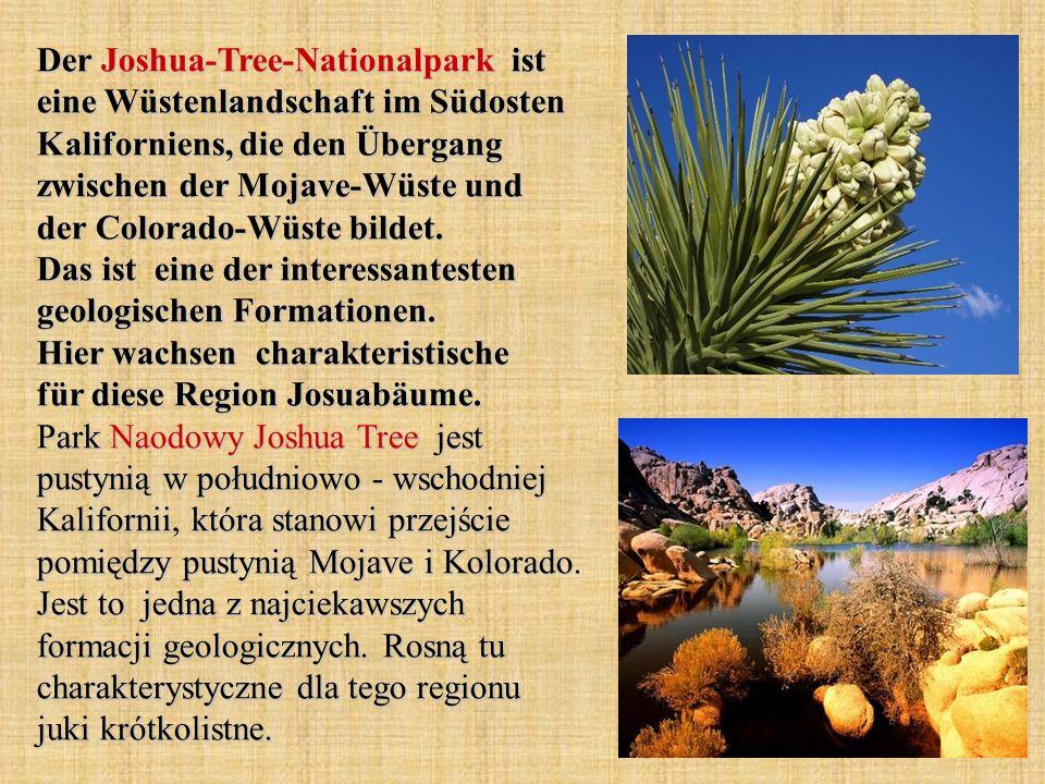 Der Joshua-Tree-Nationalpark ist eine Wüstenlandschaft im Südosten Kaliforniens, die den Übergang zwischen der Mojave-Wüste und der Colorado-Wüste bildet.