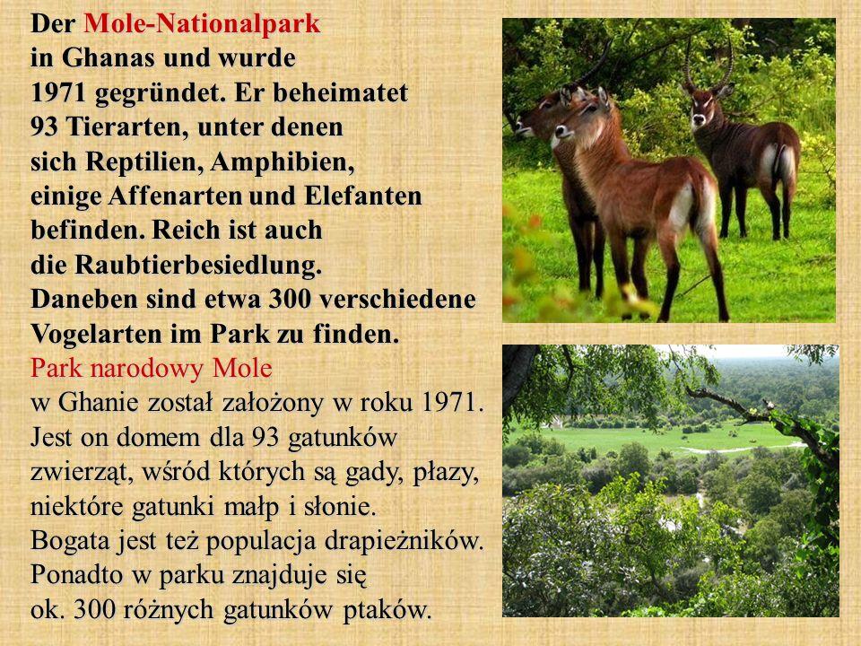 Der Mole-Nationalpark in Ghanas und wurde 1971 gegründet