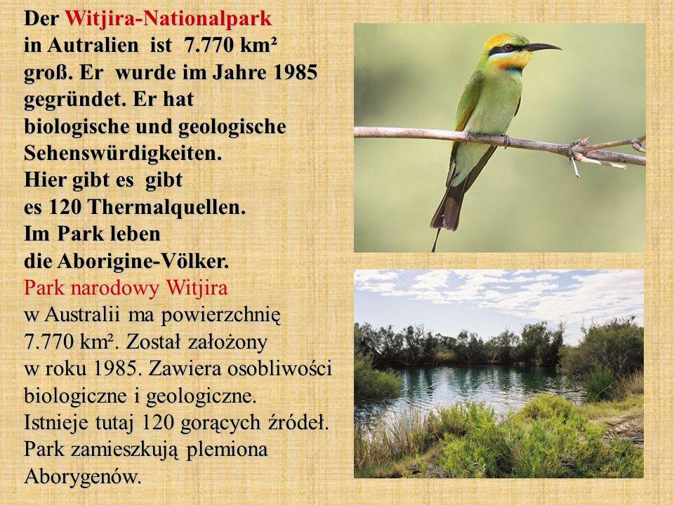 Der Witjira-Nationalpark in Autralien ist 7. 770 km² groß