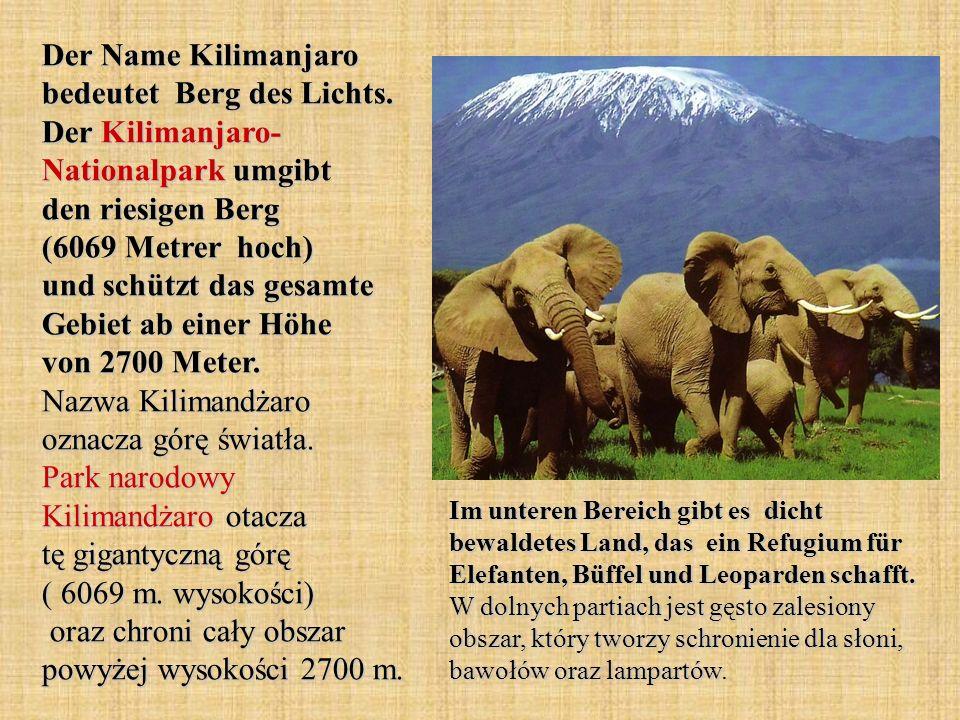 Der Name Kilimanjaro bedeutet Berg des Lichts