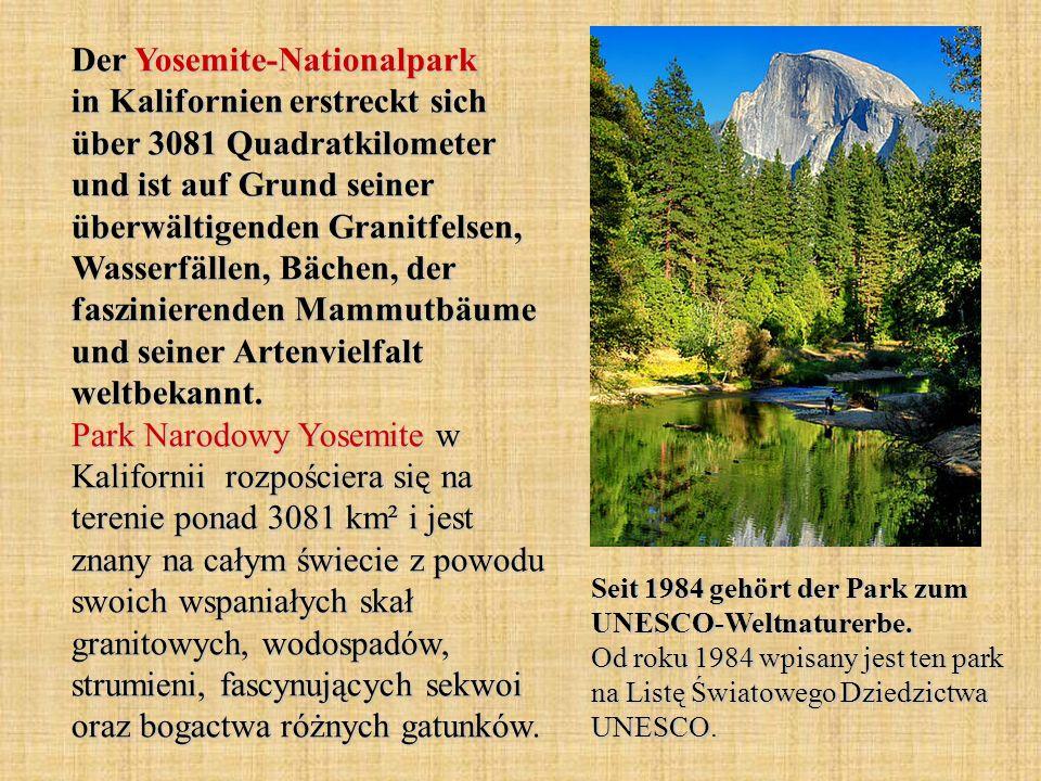 Der Yosemite-Nationalpark in Kalifornien erstreckt sich über 3081 Quadratkilometer und ist auf Grund seiner überwältigenden Granitfelsen, Wasserfällen, Bächen, der faszinierenden Mammutbäume und seiner Artenvielfalt weltbekannt. Park Narodowy Yosemite w Kalifornii rozpościera się na terenie ponad 3081 km² i jest znany na całym świecie z powodu swoich wspaniałych skał granitowych, wodospadów, strumieni, fascynujących sekwoi oraz bogactwa różnych gatunków.