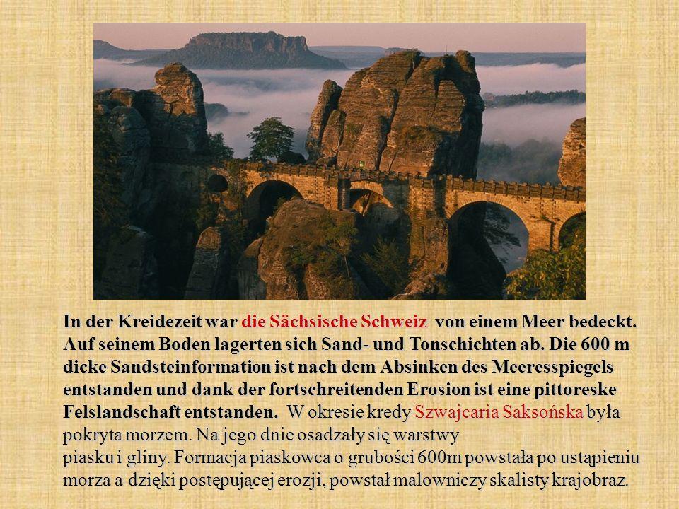 In der Kreidezeit war die Sächsische Schweiz von einem Meer bedeckt
