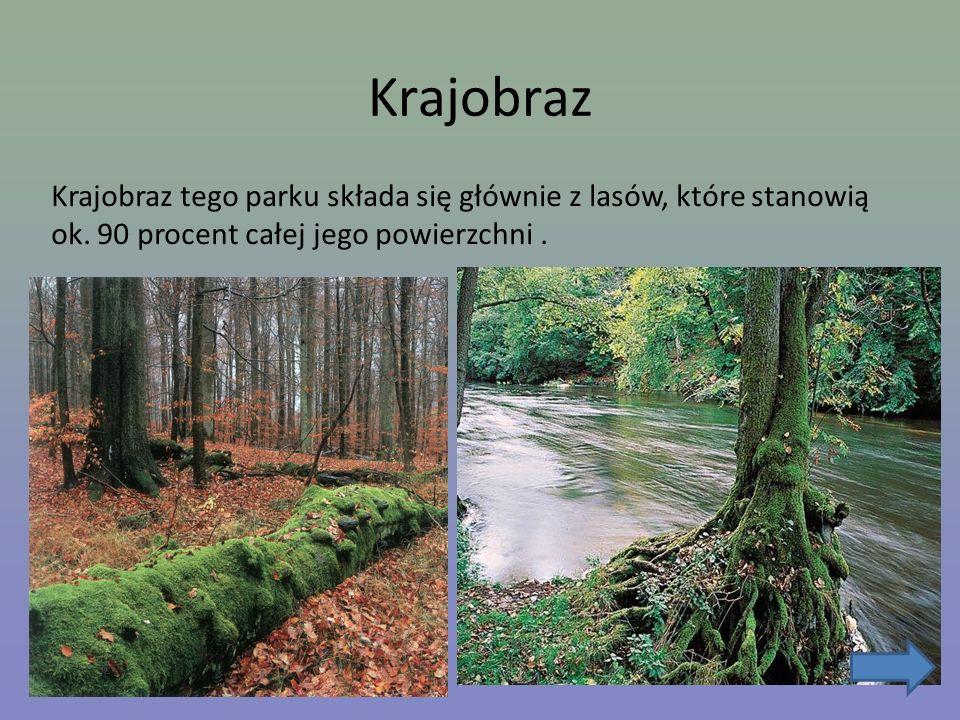 Krajobraz Krajobraz tego parku składa się głównie z lasów, które stanowią ok.