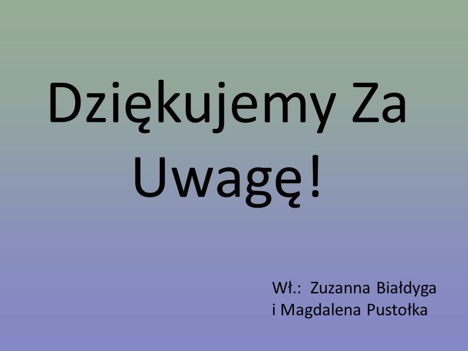 Dziękujemy Za Uwagę! Wł.: Zuzanna Białdyga i Magdalena Pustołka