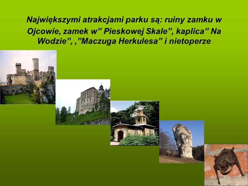 Największymi atrakcjami parku są: ruiny zamku w Ojcowie, zamek w Pieskowej Skale , kaplica Na Wodzie , , Maczuga Herkulesa i nietoperze