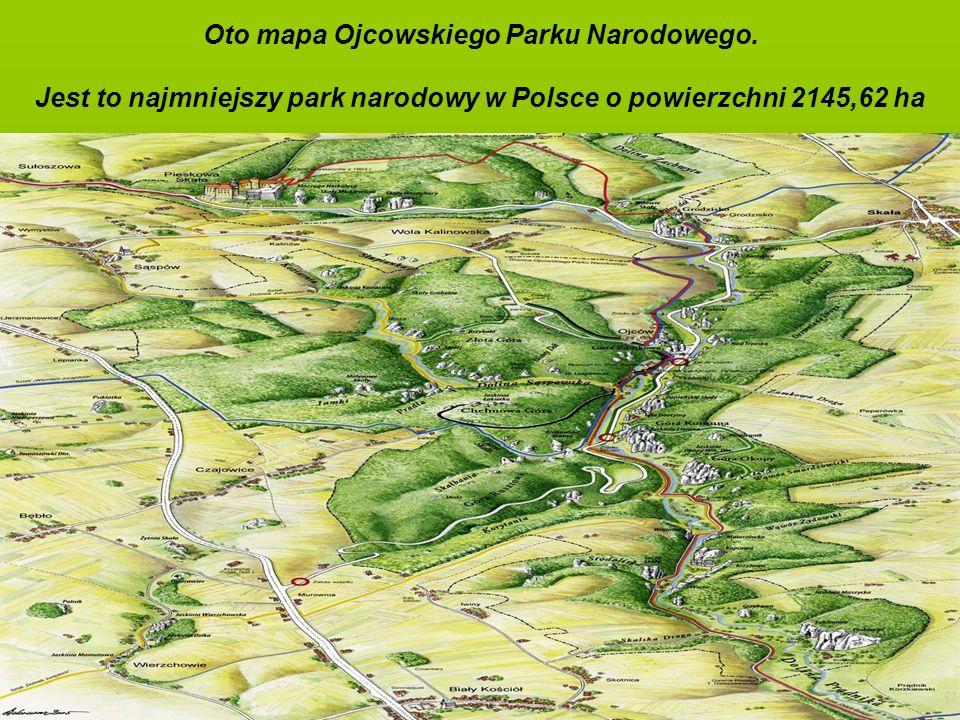Oto mapa Ojcowskiego Parku Narodowego