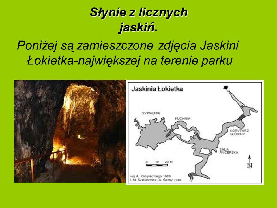 Słynie z licznych jaskiń.