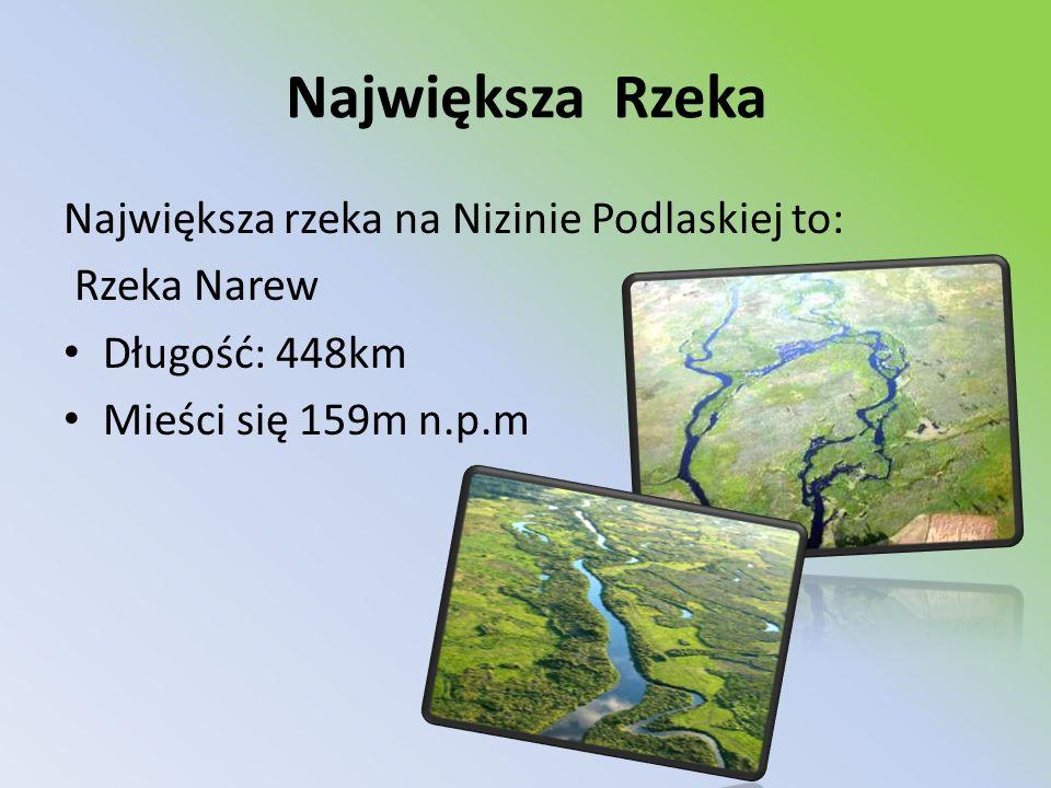 Największa Rzeka Największa rzeka na Nizinie Podlaskiej to: