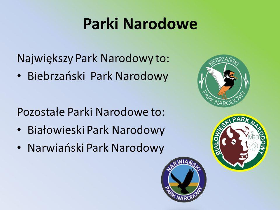 Parki Narodowe Największy Park Narodowy to: Biebrzański Park Narodowy
