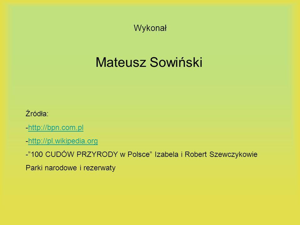 Mateusz Sowiński Wykonał Źródła: -http://bpn.com.pl