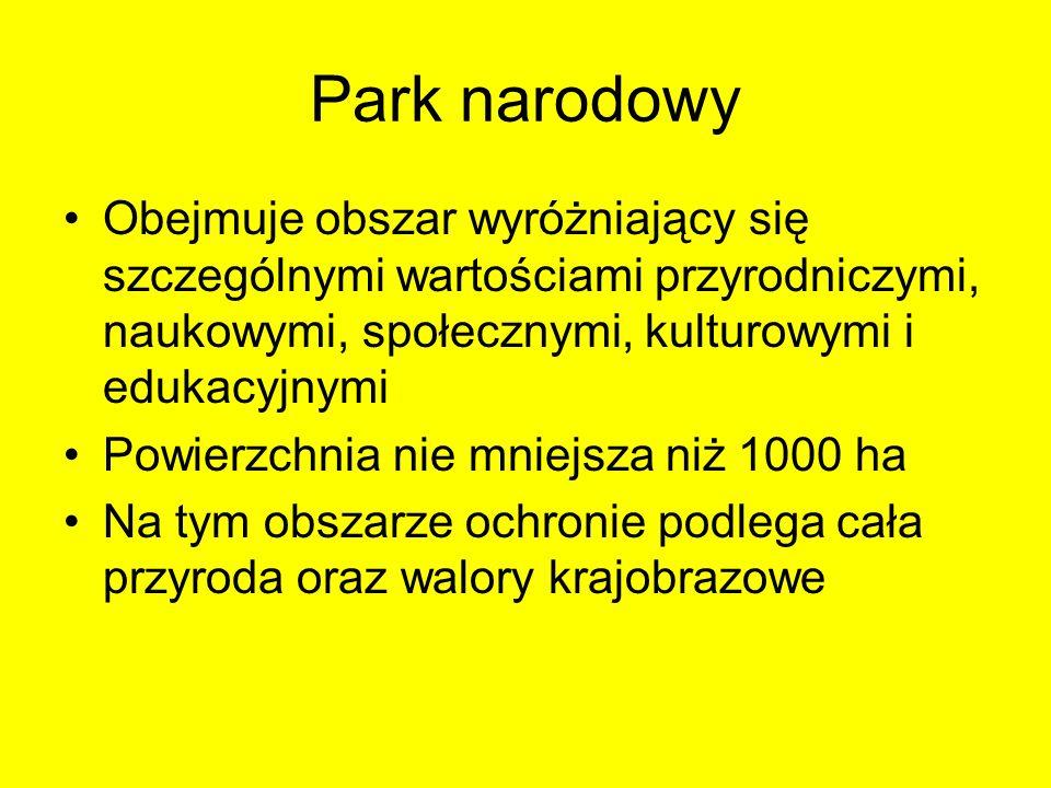 Park narodowy Obejmuje obszar wyróżniający się szczególnymi wartościami przyrodniczymi, naukowymi, społecznymi, kulturowymi i edukacyjnymi.