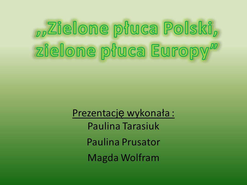 Prezentację wykonała : Paulina Tarasiuk Paulina Prusator Magda Wolfram