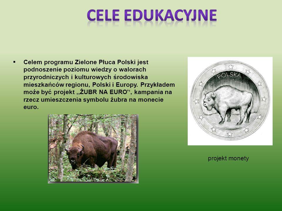 Cele edukacyjne projekt monety