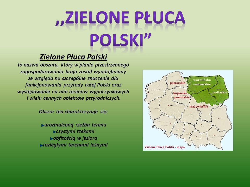 ,,Zielone płuca Polski Zielone Płuca Polski