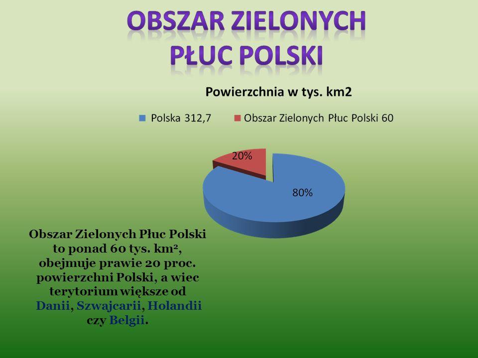 Obszar zielonych płuc polski Danii, Szwajcarii, Holandii czy Belgii.