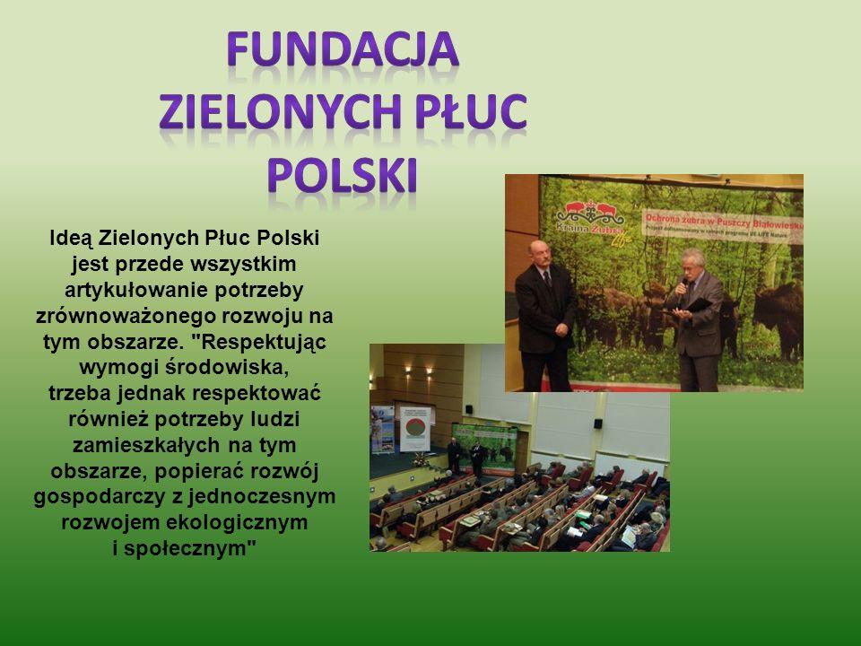 Fundacja Zielonych płuc polski