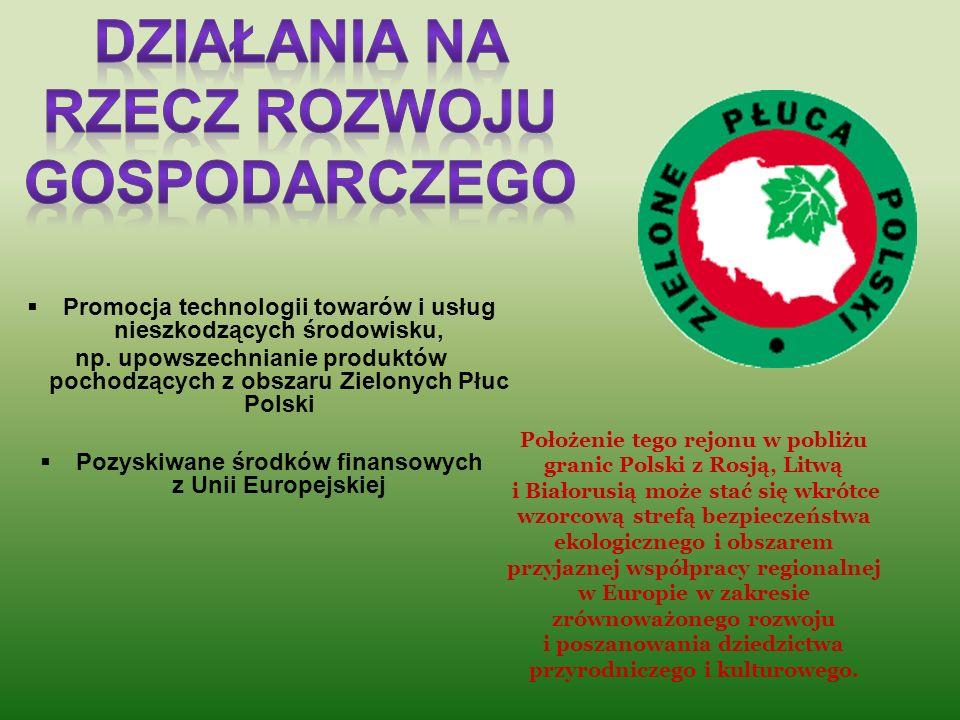 Działania na rzecz rozwoju gospodarczego
