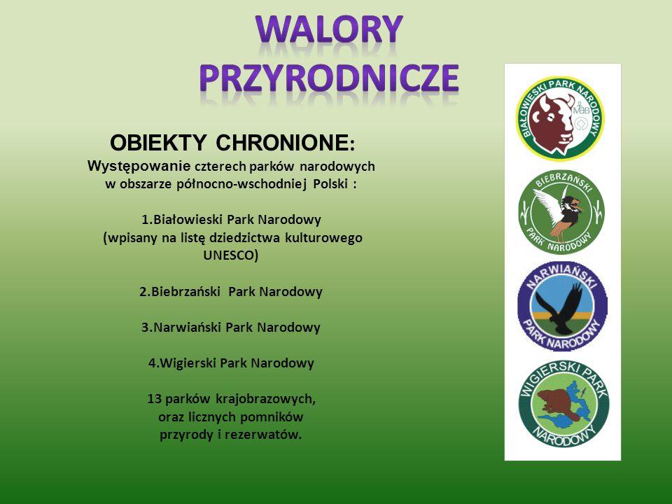 Walory Przyrodnicze OBIEKTY CHRONIONE: