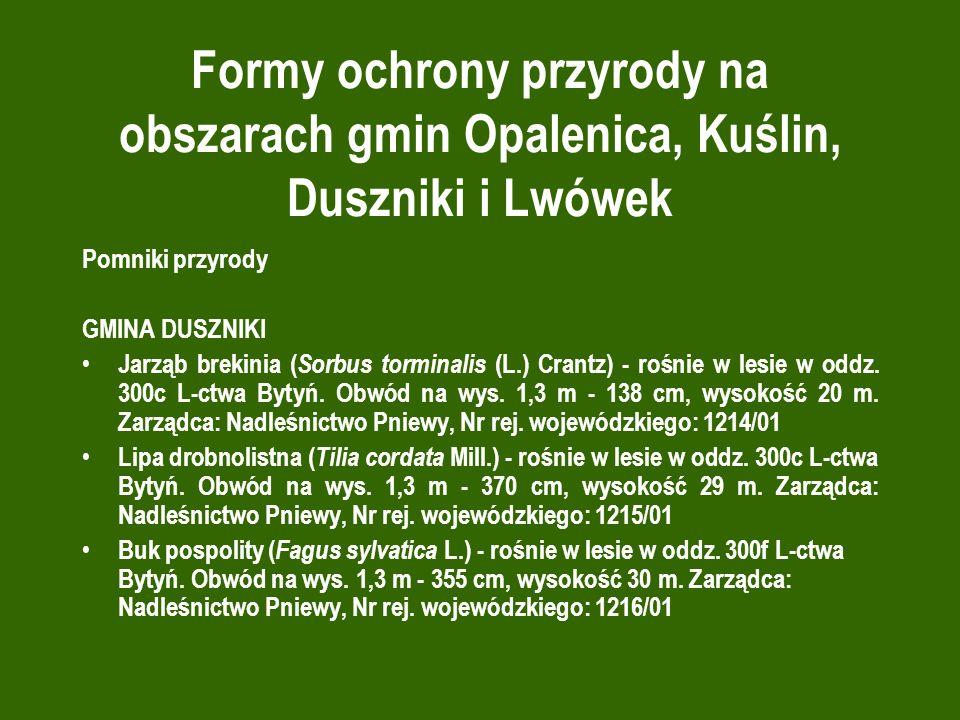 Formy ochrony przyrody na obszarach gmin Opalenica, Kuślin, Duszniki i Lwówek