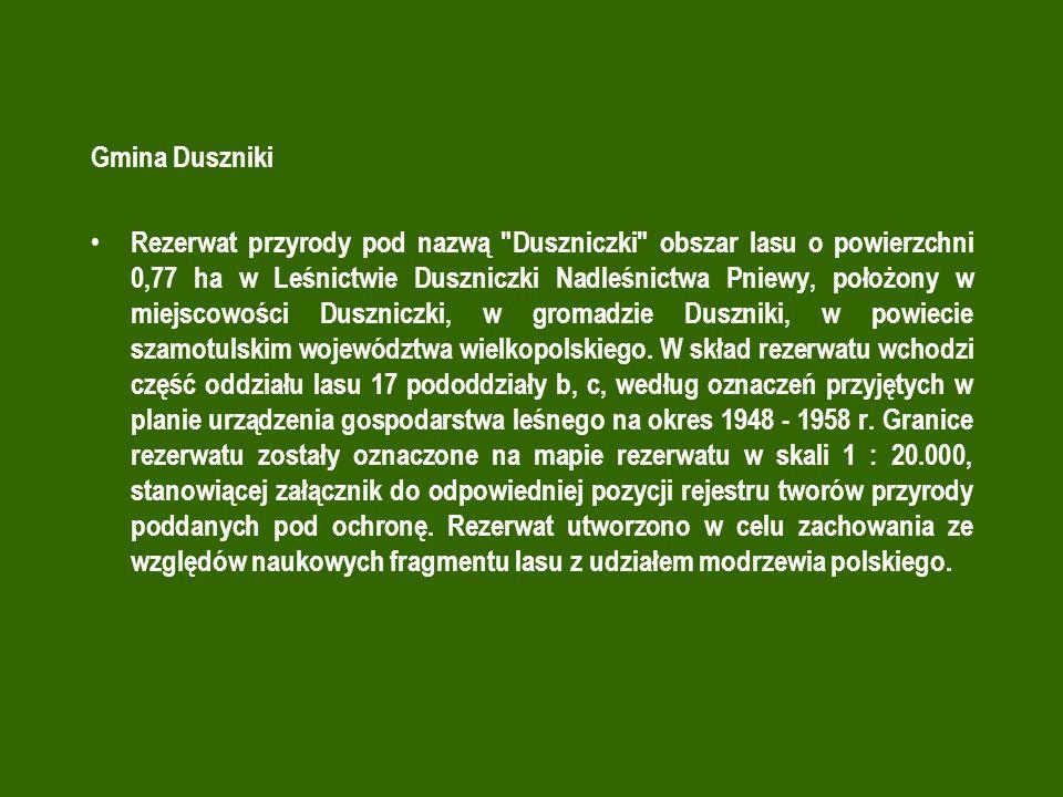 Gmina Duszniki