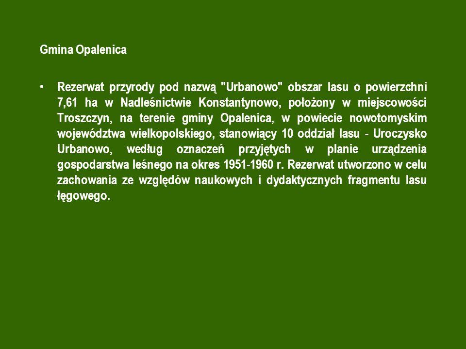 Gmina Opalenica
