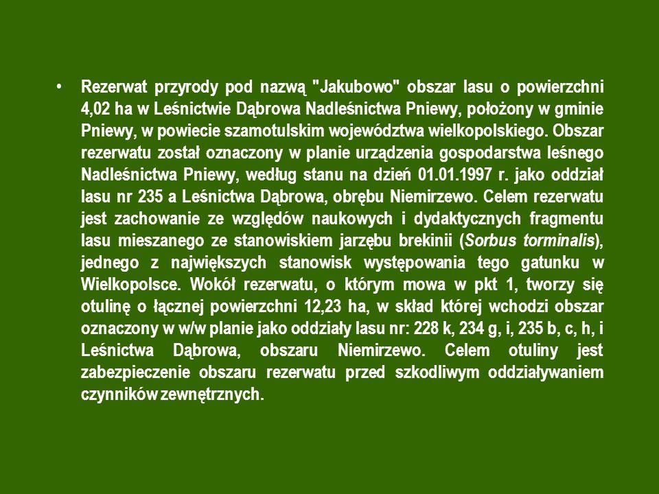 Rezerwat przyrody pod nazwą Jakubowo obszar lasu o powierzchni 4,02 ha w Leśnictwie Dąbrowa Nadleśnictwa Pniewy, położony w gminie Pniewy, w powiecie szamotulskim województwa wielkopolskiego.