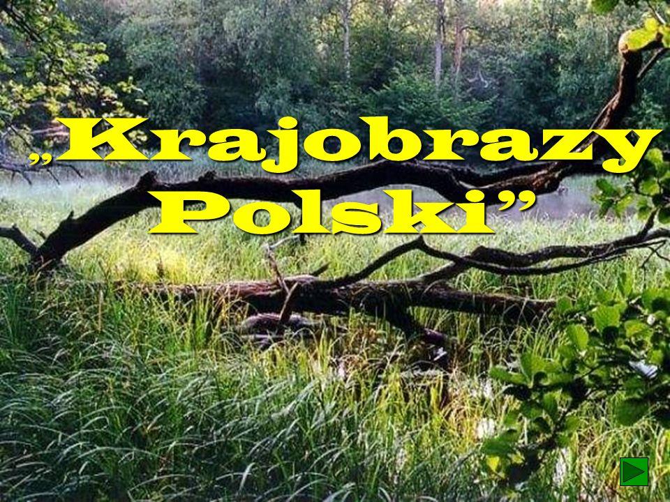 """Krajobrazy Polski 1"