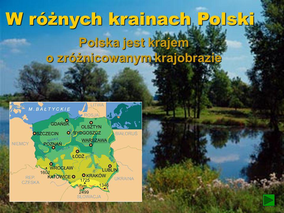 Polska jest krajem o zróżnicowanym krajobrazie