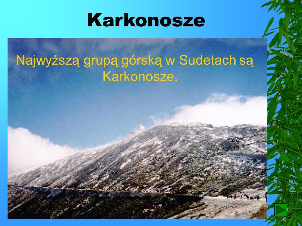 Najwyższą grupą górską w Sudetach są Karkonosze.
