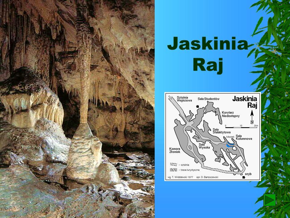 Jaskinia Raj 28