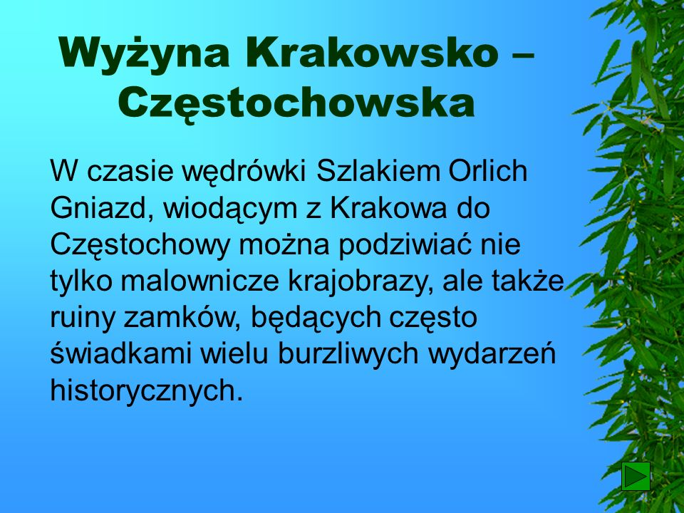 Wyżyna Krakowsko – Częstochowska