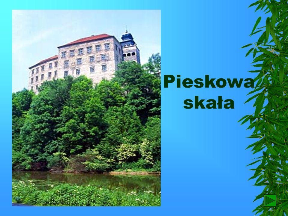 Pieskowa skała 38