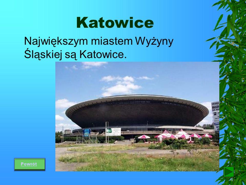 Katowice Największym miastem Wyżyny Śląskiej są Katowice. Powrót 46