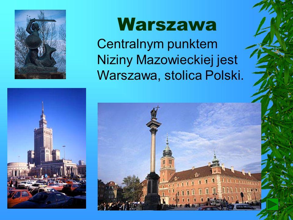 Warszawa Centralnym punktem Niziny Mazowieckiej jest Warszawa, stolica Polski. 53
