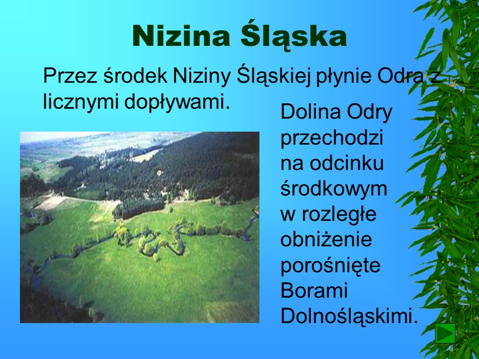 Nizina ŚląskaPrzez środek Niziny Śląskiej płynie Odra z licznymi dopływami.