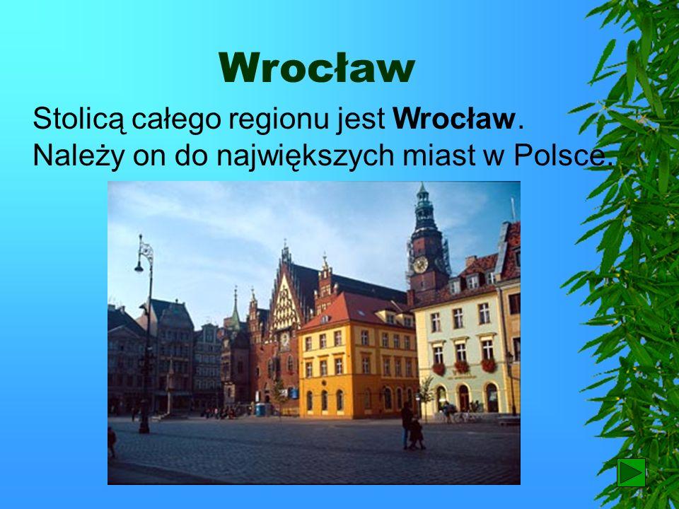 Wrocław Stolicą całego regionu jest Wrocław. Należy on do największych miast w Polsce. 56