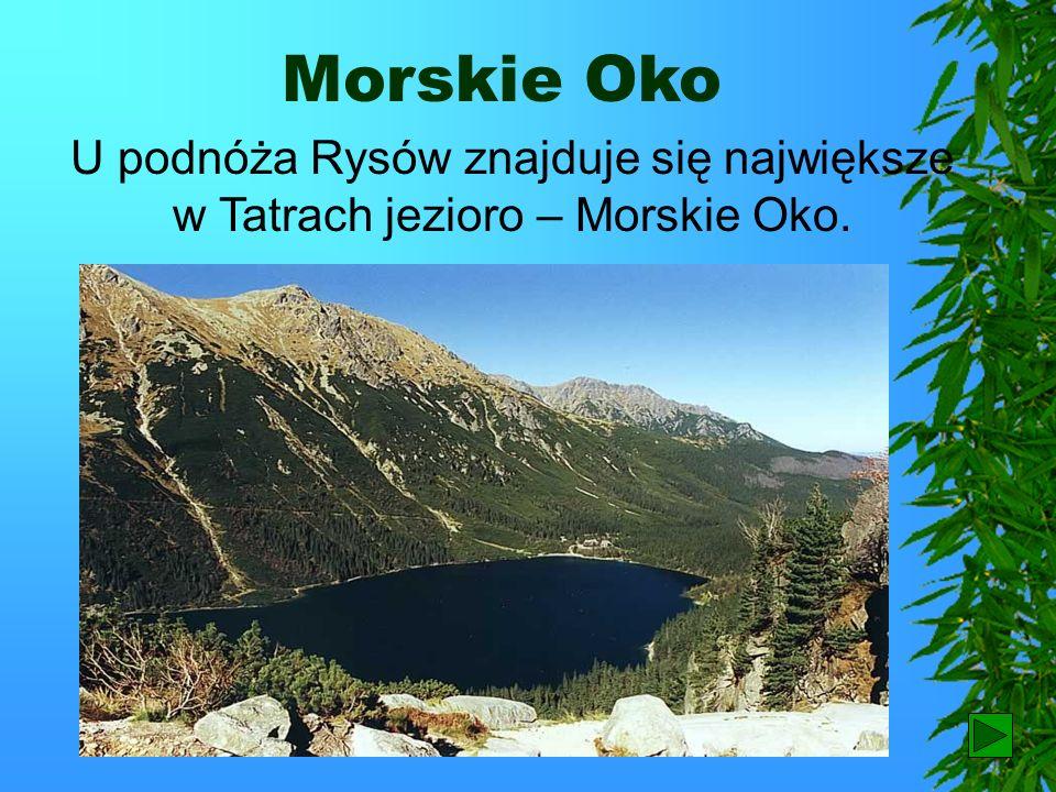 Morskie Oko U podnóża Rysów znajduje się największe w Tatrach jezioro – Morskie Oko. 6